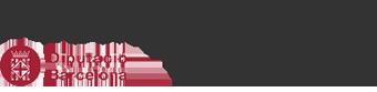 Museu de les Arts Escèniques Logo