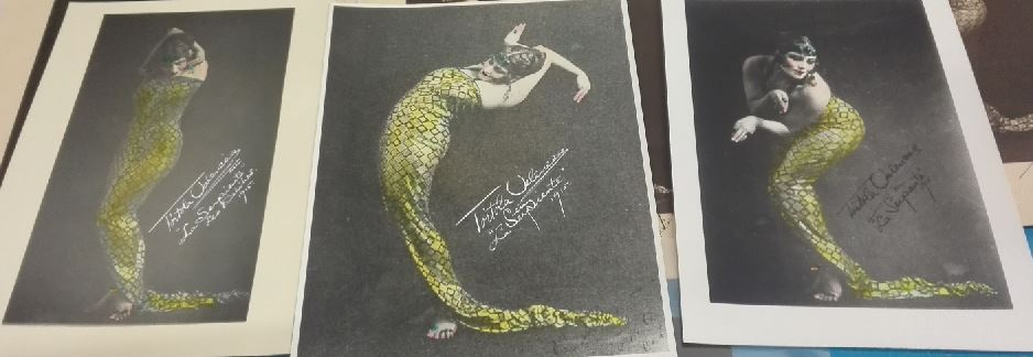 """Sèrie de 3 fotografies de la """"Danza de la serpiente"""""""